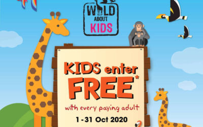 Kids Enjoy Free Admission to the Singapore Zoo, River Safari & Jurong Bird Park This Oct